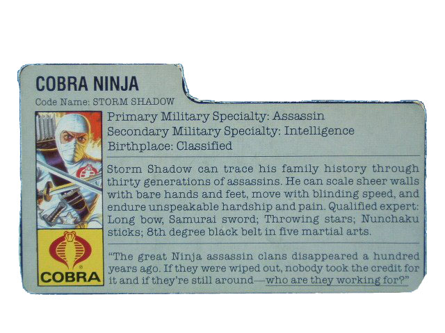 1984 GIJoe Cobra Storm Shadow COBRA NINJA Filecard